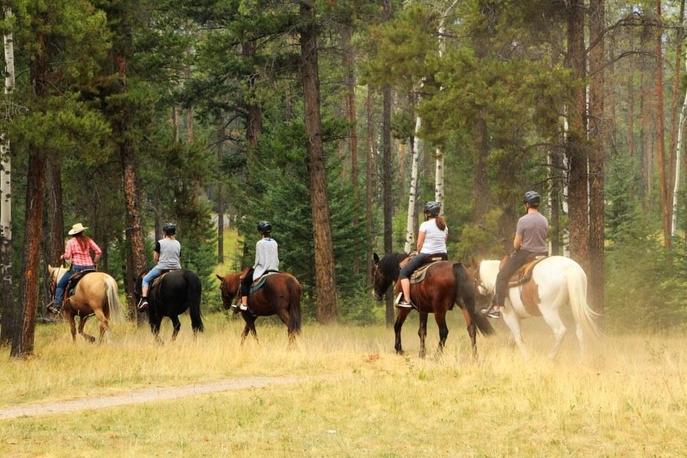 montar a caballo Esquel