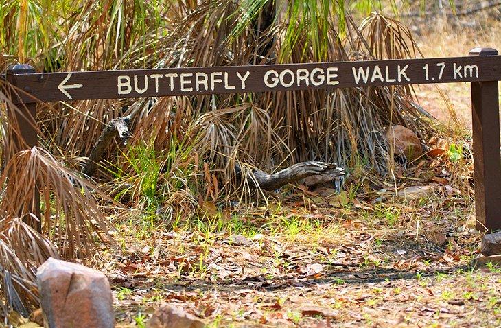 Paseo por la garganta de las mariposas